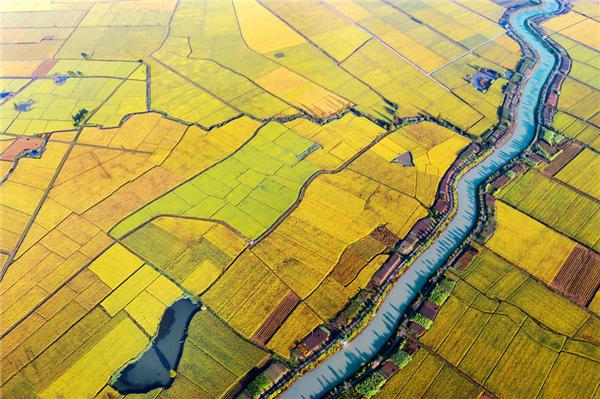 瑞安曹村田园综合体图源:瑞安发布