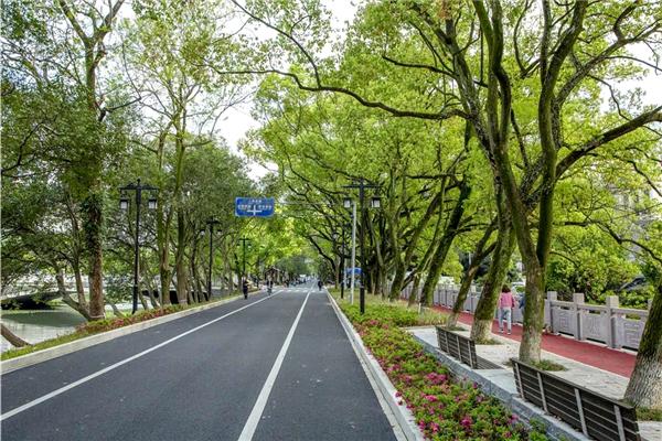 九山路图源:温州发布